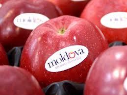 Купить Фрукты Молдова на экспорт
