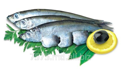 Купить Рыба соленая