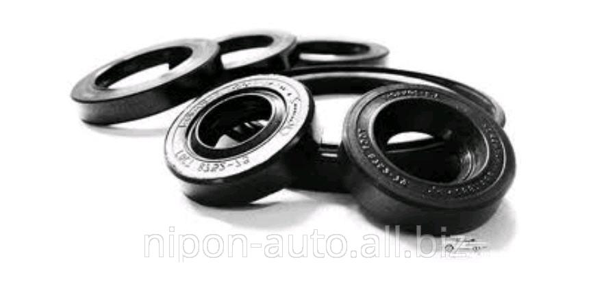 Buy Engine epiploons