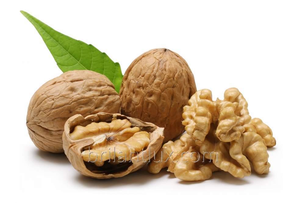 Саженцы грецкого ореха сорт Казаку