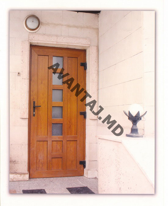 Купить Двери из красного дерева, арт. 7