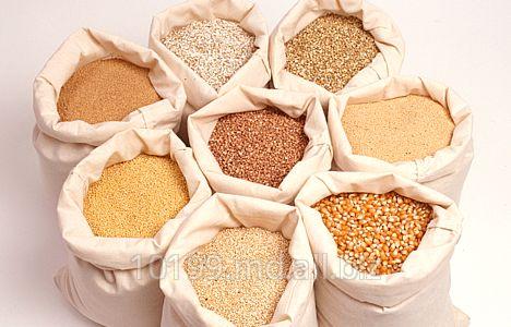 Купить Зерно Молдова, Зерновые, бобовые и крупяные культуры
