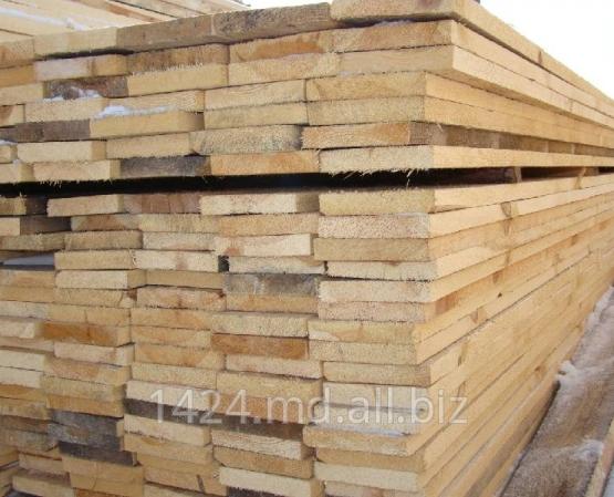 Buy Timber pine