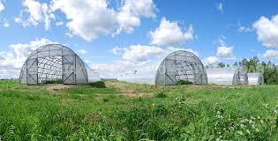 Теплицы фермерские