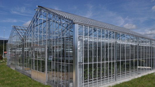 Buy Greenhouses of model of Ulm in Moldova