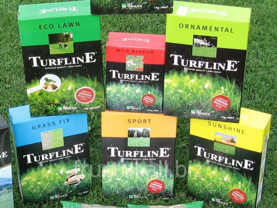 Купить Seminte de gazon DLF Trifolium ! Iarba pe gazon