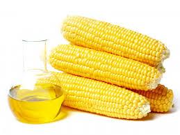 Купить Масло из зародышей кукурузы
