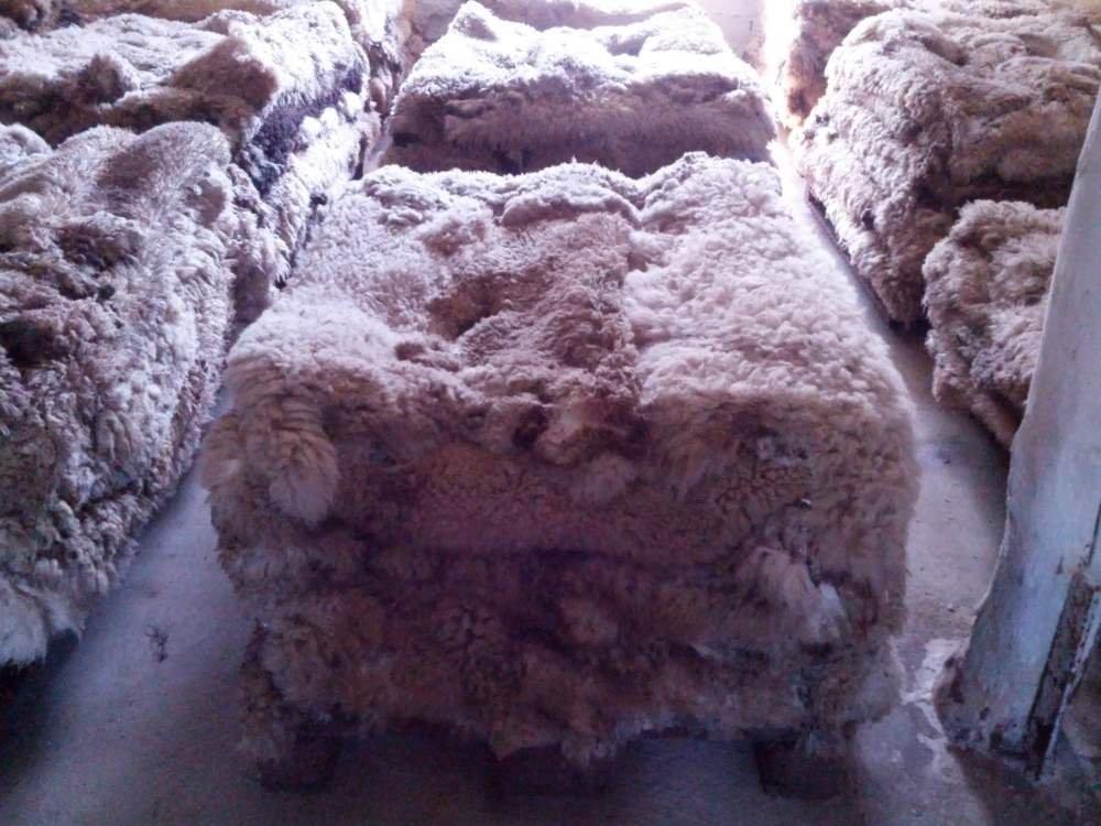Acheter Сырье кожаное и меховое по наилучшей цене,Сырье кожаное в Кишиневе,Сырье меховое в Молдове