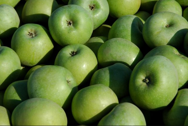 Яблоки Renet Semerenko