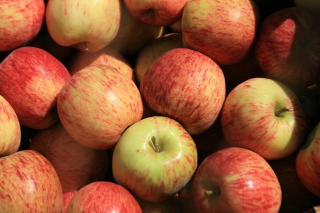 Яблоки Jona Gold