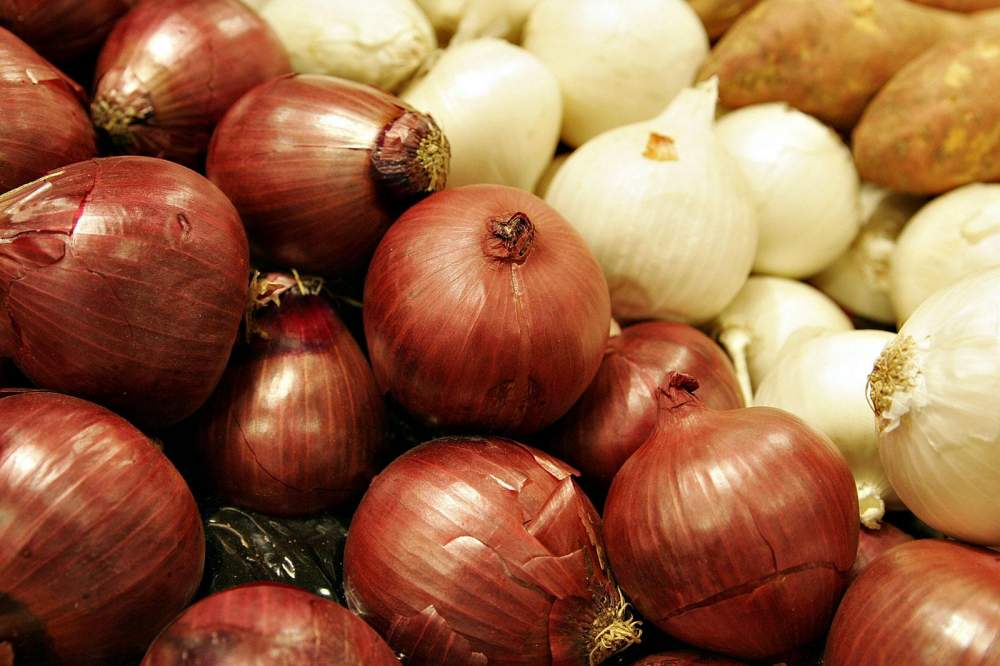 Buy Onions fresh