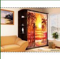 Купить Шкаф-купе с фотопечатью с пальмами на фоне заката