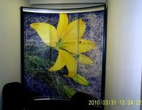 Купить Радиусный шкаф-купе с цветком