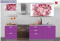 Кухня с фотофасадом (розовые цветы)