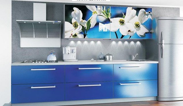 Купить Кухня с фотофасадом (белые цветы)