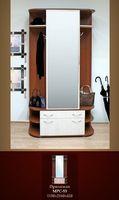 Купить Шкаф с зеркальной дверью в прихожую