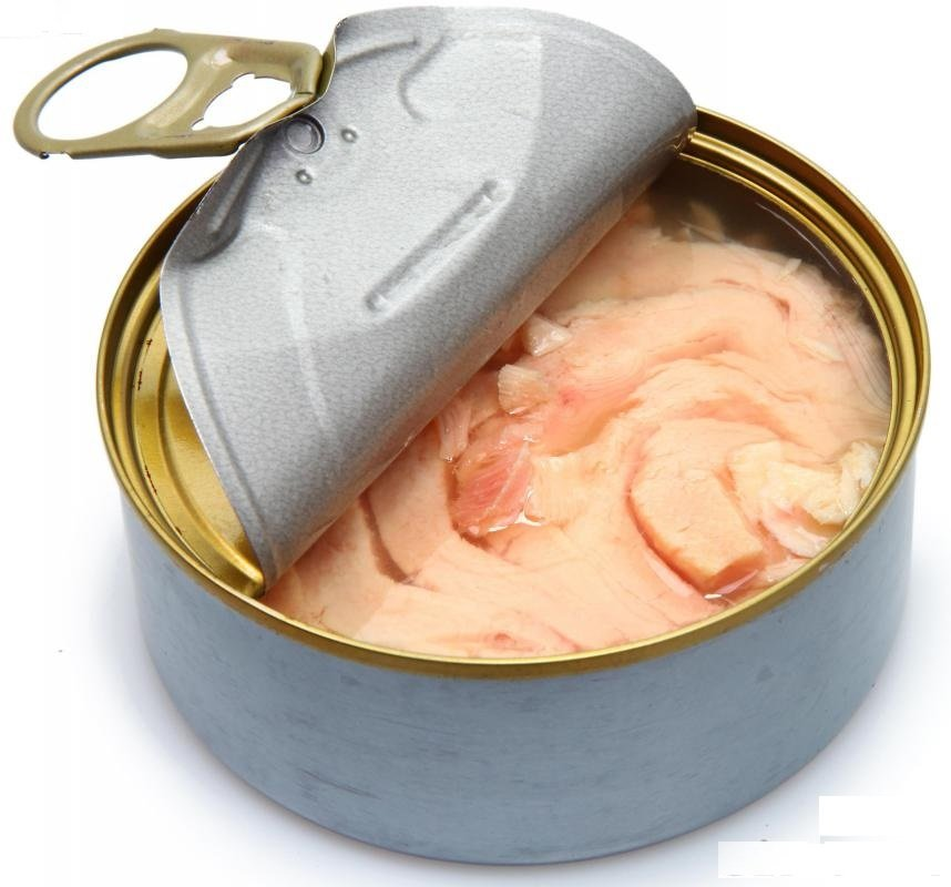 Tuna in canned food oil