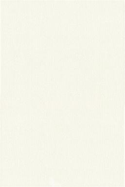 Купить Плитка настенная Werbena White 30x45 W228-001-1