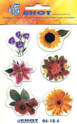 Печать наклеек, этикетка на самоклейке в Молдове Фото, Изображение Печать...