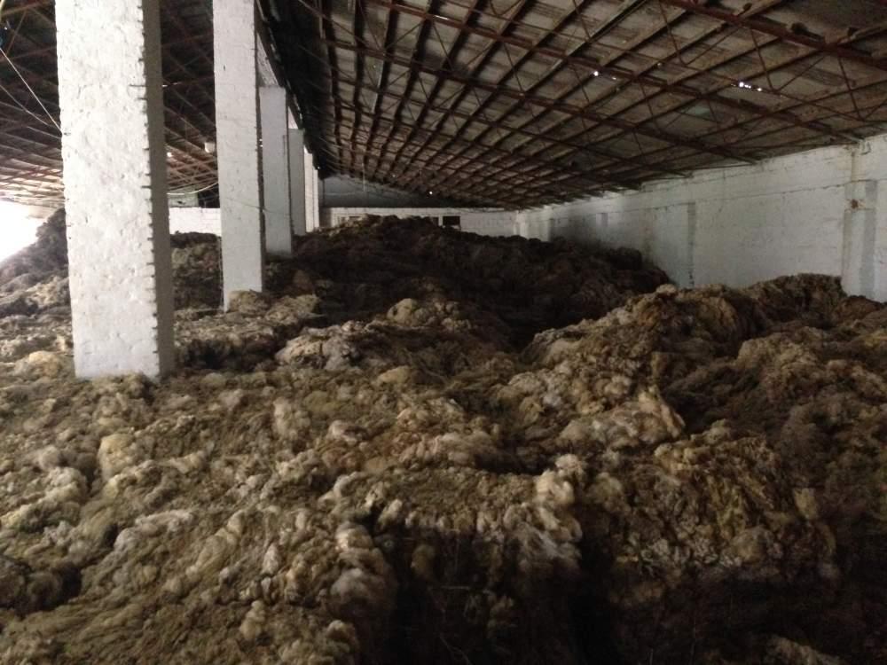 Продажа шерсти в Молдове