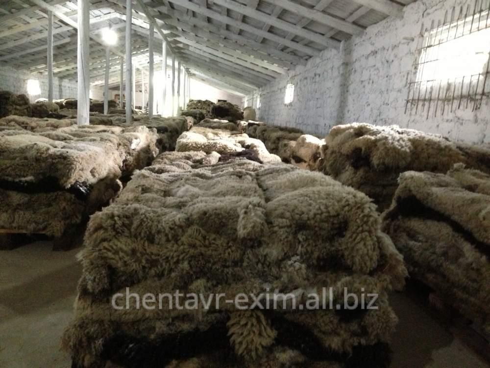 Шкура овечья продать оптом
