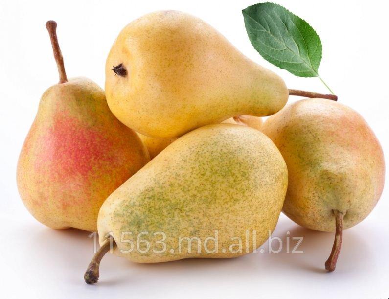 Buy Pear in Moldova