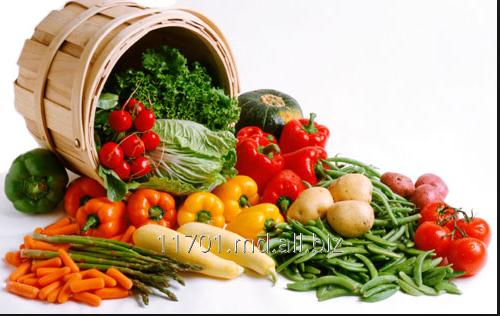 Купить Выращивание овощей.