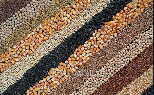 Купить Зерновые культуры.