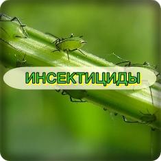 cumpără Insecticide