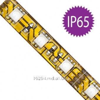 Купить Светодиодная лента FN LS607