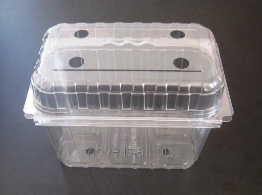 Buy The container PET L - 011 (250 g)