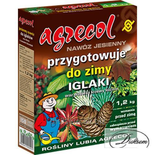 Buy Fertilizer for coniferous plants of Z-229