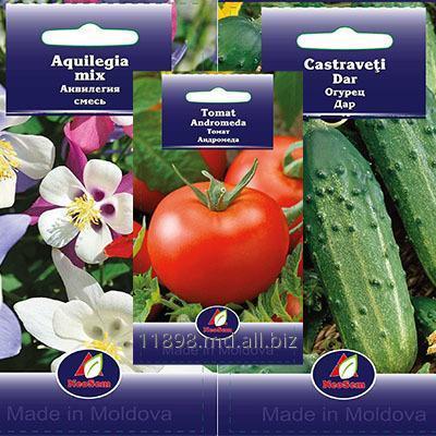 Купить Семена в Молдове