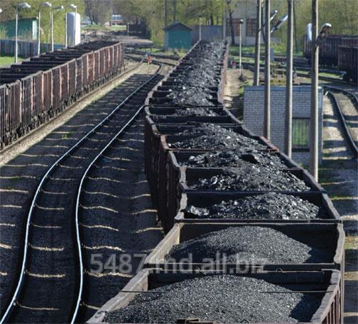 Купить Уголь оптом