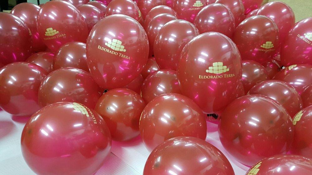 Печатная продукция Branding baloanilor