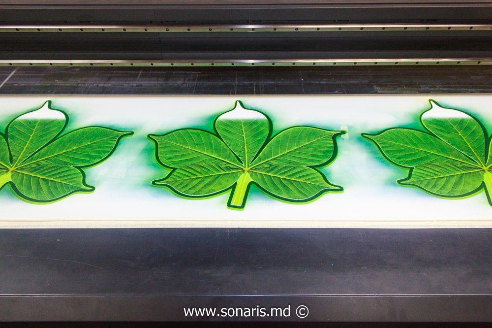 Печатная продукция Frunze din PVC cu imprimare UV