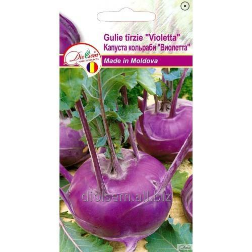Семена Kапусты кольраби Виолетта 1.5гр.
