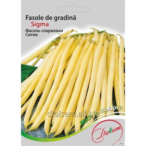 Buy Sigma beans 20 g.