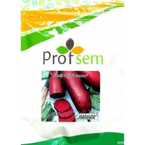 Buy Beet seeds Ataman