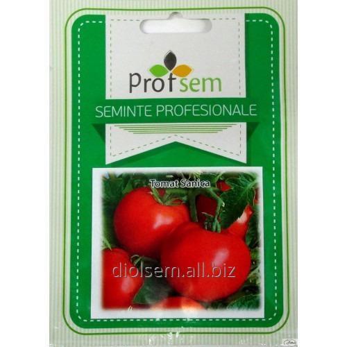 Семена томатов Sanica