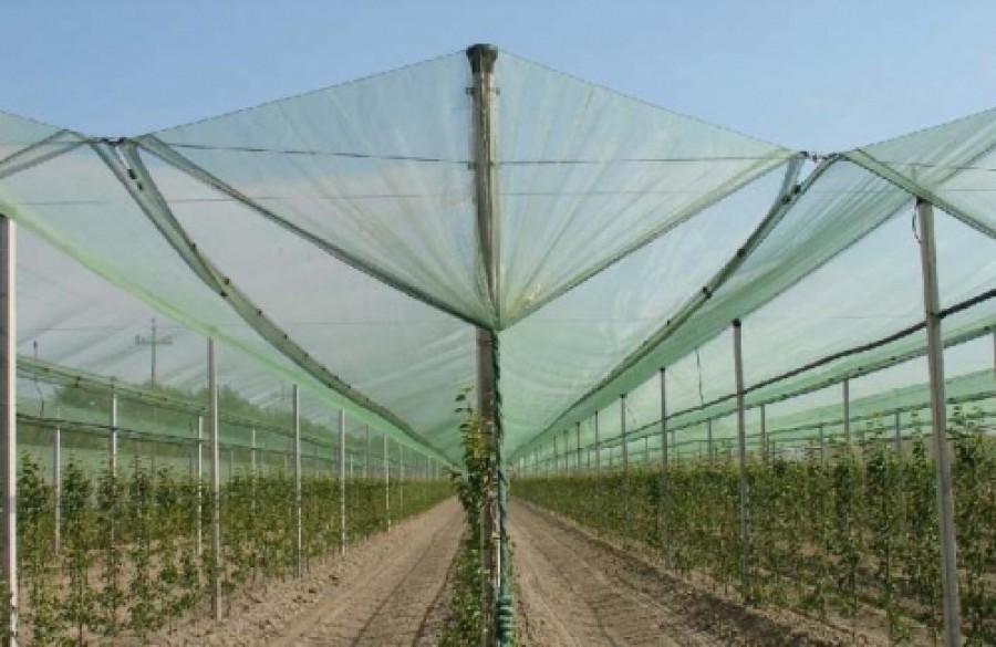 Buy Protective shadowed mesh
