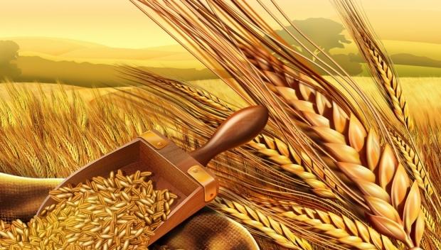 Купить Сельхозпродукция