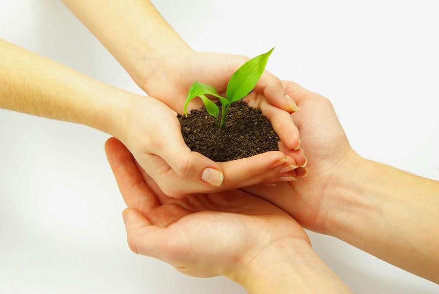 Органические удобрение для овощей в Молдове
