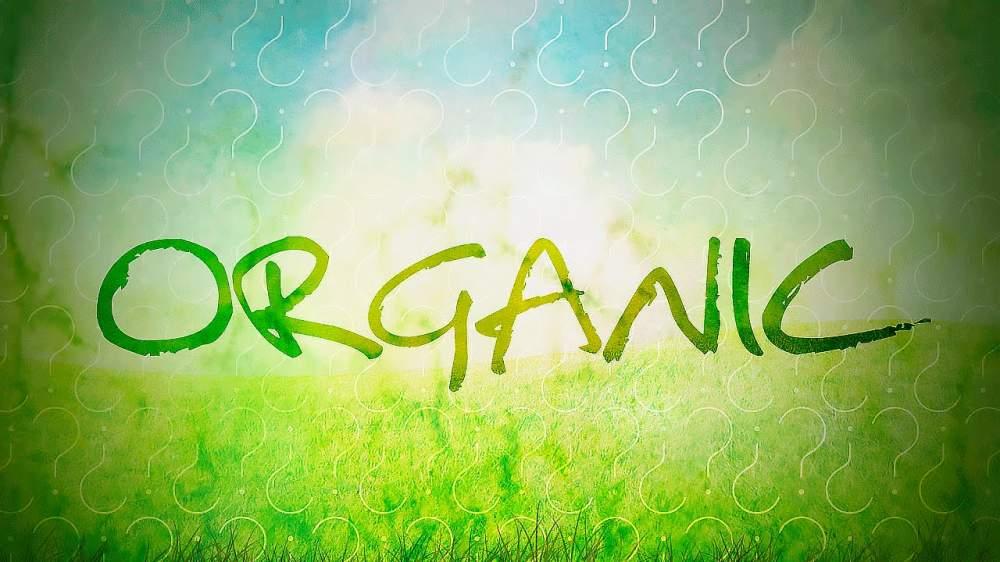 Органические удобрения для ягод в Молдове
