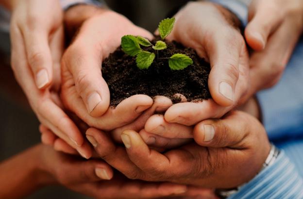 Органическое удобрение в Молдове