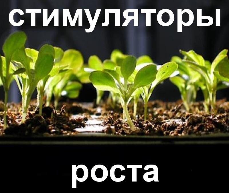 Stimolanti di crescita delle piante (humate)