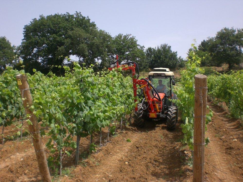 Buy DE800 (3+1+3P) of Mashin for stamping of vinogralnik