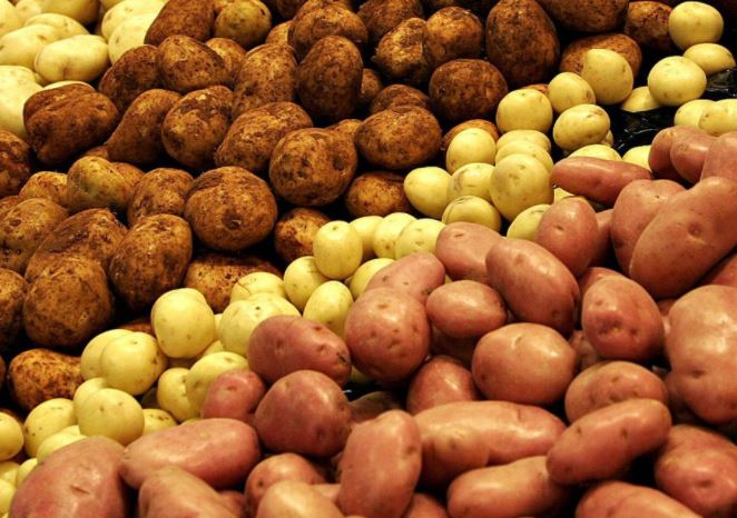 GSM potatoes: 068633385 GSM: 079999383
