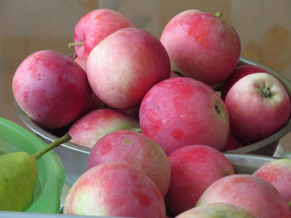 """Купить Яблоки на экспорт свежие - Слава Победителям от CAP """"Basarabia"""""""