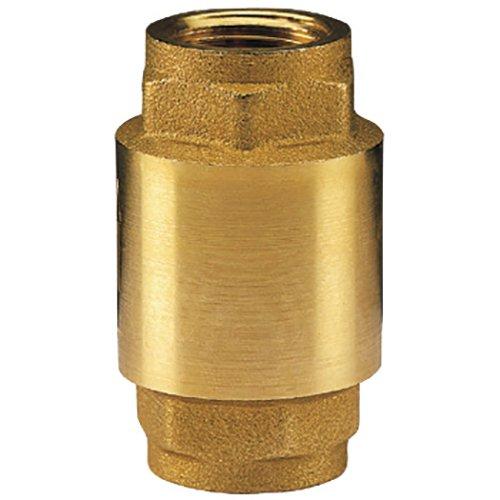 Клапан обратный пружинный 1